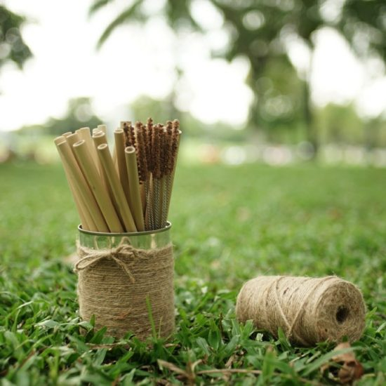 Organic bamboo straw
