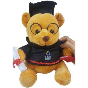 graduate bears